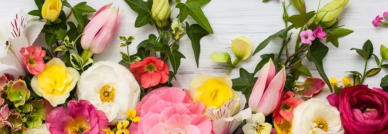 Voyages Rubio - Voyages de groupe - La Fête des fleurs à Gérone