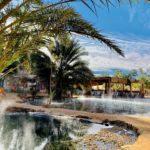 Voyages Rubio - Actualité - Oasis Tunisie